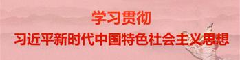 习近平新时代中国特色社会主义思想学习
